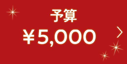 男性おすすめのクリスマスプレゼント(5,000円以下)