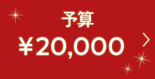 男性おすすめのクリスマスプレゼント(10,001〜20,000円)