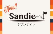 【特集】サンディ